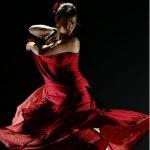 Flamenco Kulturnacht Schleswig-Holstein-Haus